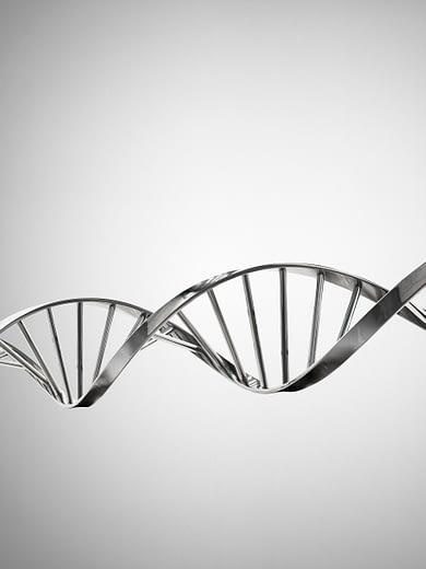 DNA – BMW Vanderperre